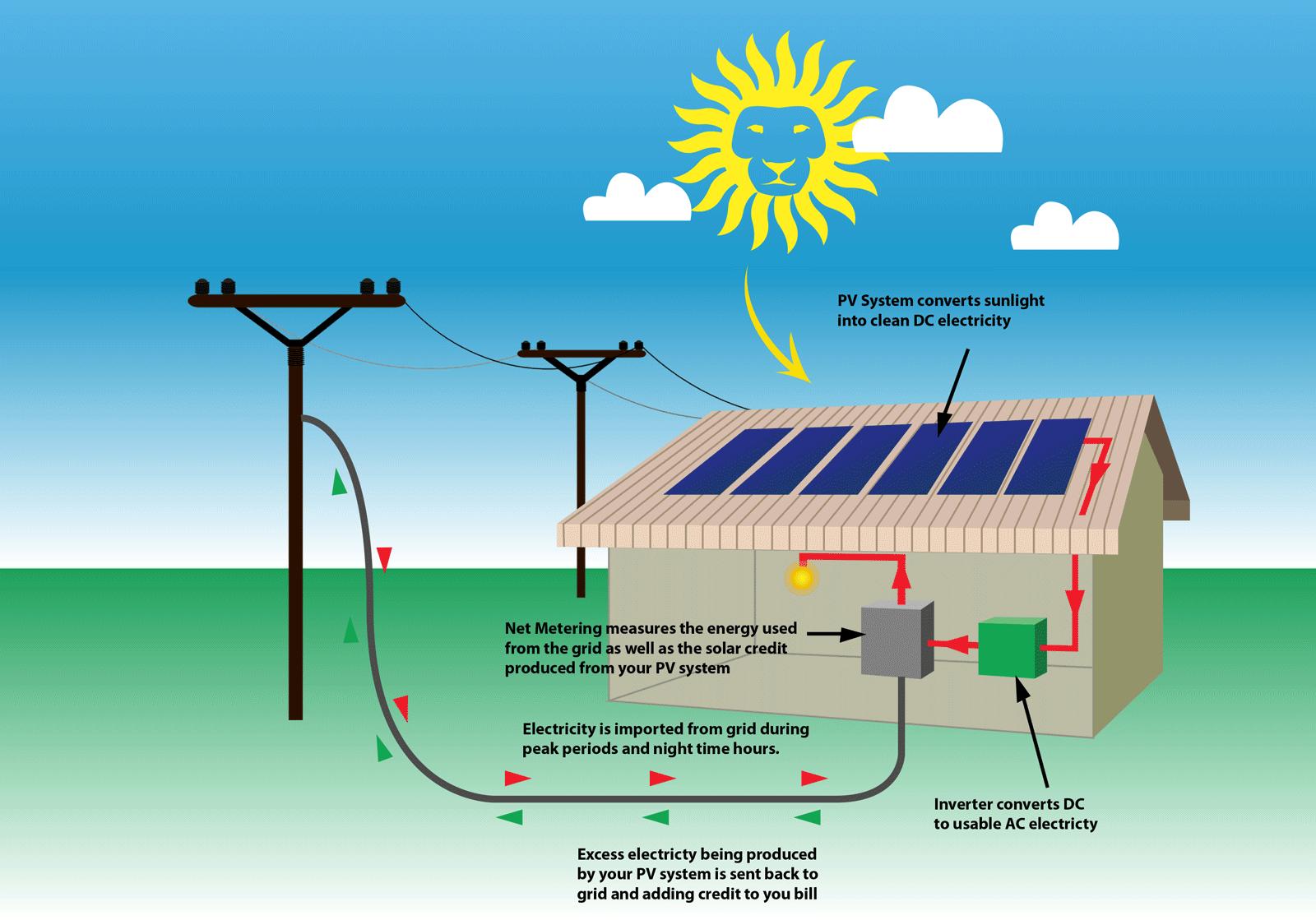 Home - Roar Solar